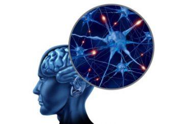 Обострение рассеянного склероза: симптомы, лечение
