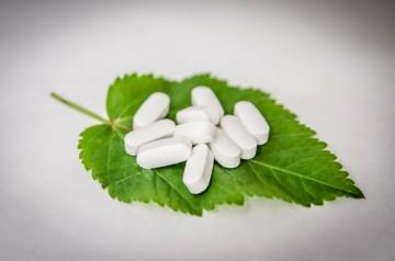 Осиновая кора: лечение простатита народным способом